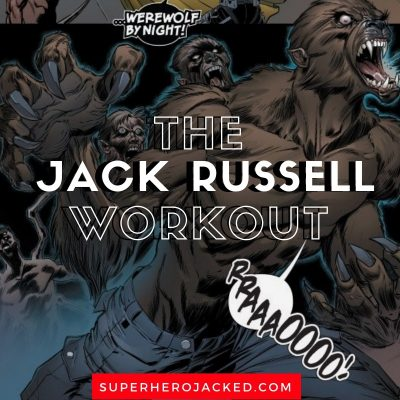 Jack Russell Workout and Diet