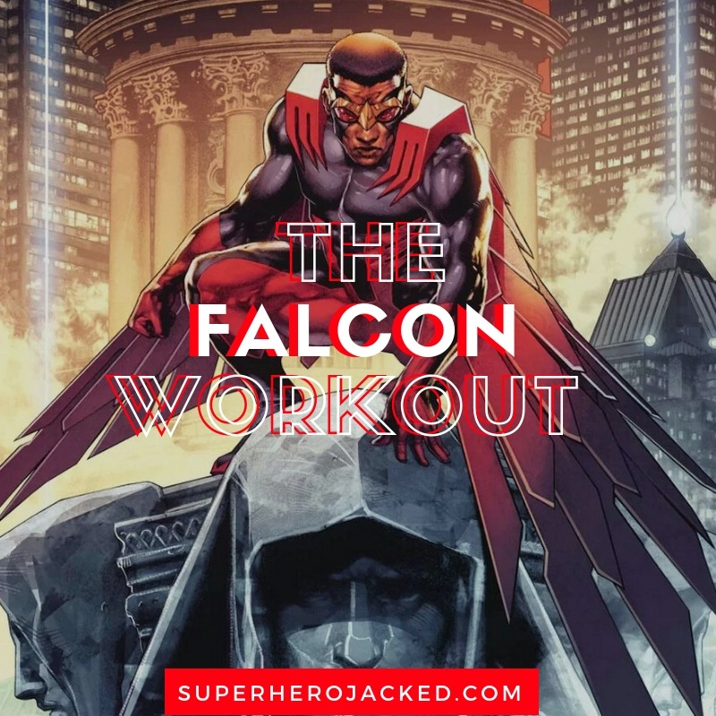 Falcon Workout Routine