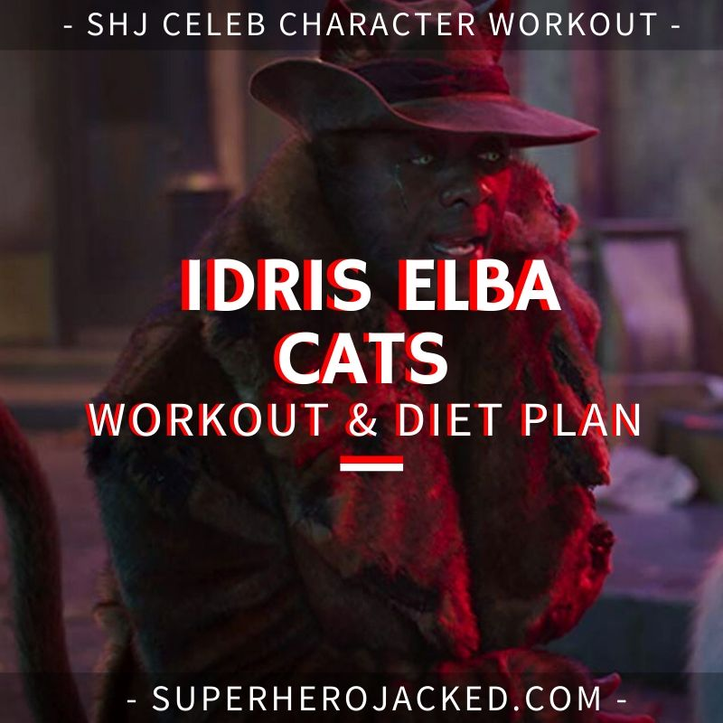 Idris Elba Cats Workout and Diet