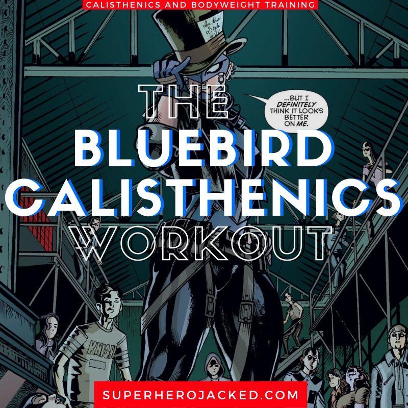 Bluebird Calisthenics Workout